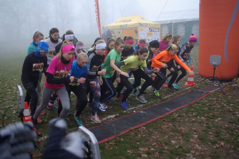 Fotografie IMGP0599.jpg v galerii Podzimní běh lyžařů